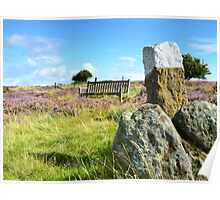 Is that seat taken? North Yorkshire Moors Poster
