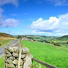 Fryup Dale, North York moors by apple88