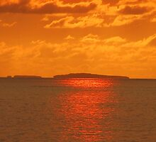 Island in the sun - golden painted by sunset by Bernhard Matejka
