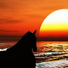 Sundown with Horse. by alaskaman53