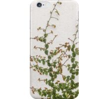 Bindweed iPhone Case/Skin