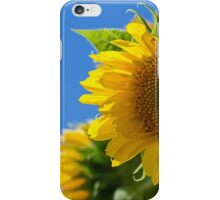 Summer Glory iPhone Case/Skin