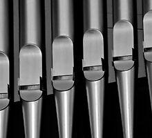 Organ pipes #1 by Erika Gouws