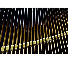 Organ pipes #2 Photographic Print
