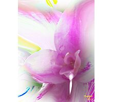 Serene colors of  Love devine Photographic Print