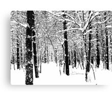 Black and White Winter Forest Canvas Print