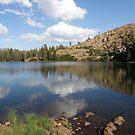 Upper Rock Lake Reflections by Patty Boyte