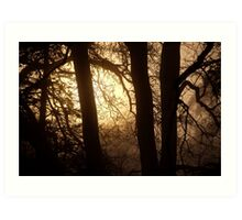 landscapes #259, behind trees Art Print