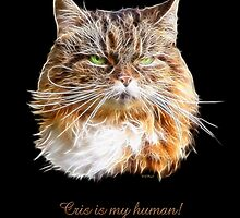 """Molly says, """"Cris is MY human! by Liane Pinel"""
