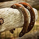Hanging Horseshoes  by vividpeach