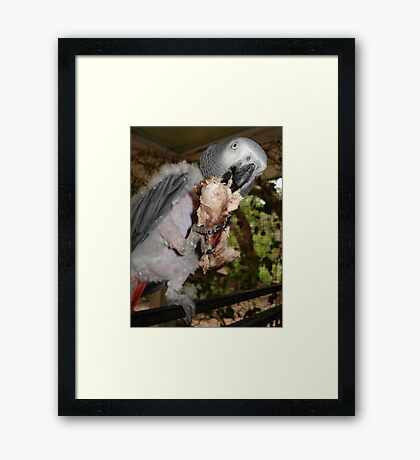 ASHLEY AND HER SPARE RIB Framed Print