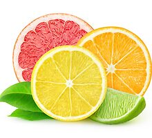 Fresh citrus fruits by 6hands