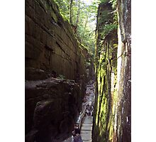 Flume Gorge, The Look Back Photographic Print