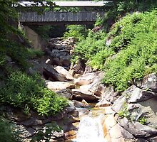 Covered Bridge at Flume Gorge by neview