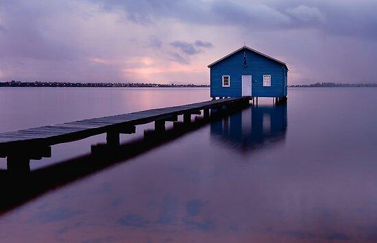 On the Swan River  by Pene Stevens