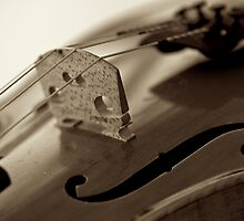 Violin in Sepia by Renee Hubbard Fine Art Photography