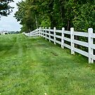 Fence To The Waterfront by phil decocco