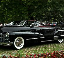 Caddy Drop Top by barkeypf