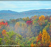 The Great Smoky Mountains by Donna Anglin Husband