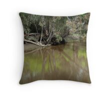 Reflecting on the Barwon Throw Pillow