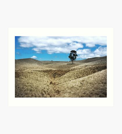 Field of Saddle Road Dreams Revisited Art Print