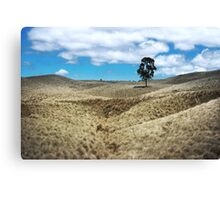 Field of Saddle Road Dreams Revisited Canvas Print