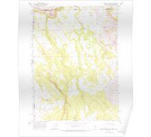 USGS Topo Map Nevada Barrel Springs 318048 1966 24000 Poster