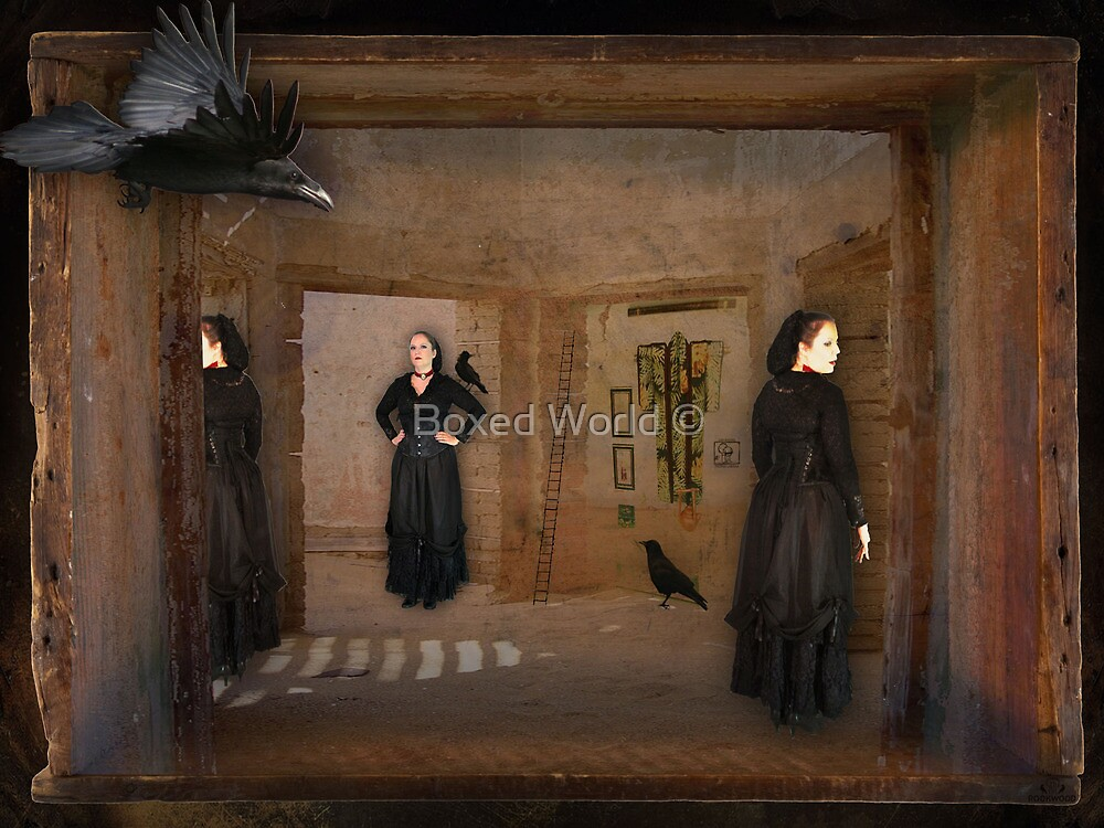 Boxed World Collection - Image 18 - Raven House by Boxed World ©