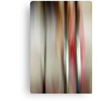 Mea #13 (Object Series) Canvas Print