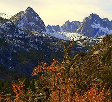 """""""Sierra Panorama""""  by Lynn Bawden"""