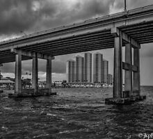 Storm Fury by John  Kapusta