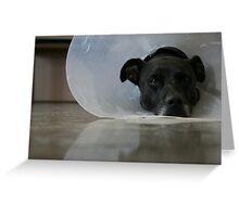 Satellite Head -- Get Well Soon Greeting Card