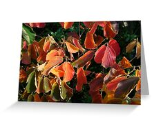 AutumnLeaves Greeting Card