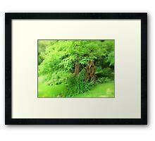 Fluffy Tree's Framed Print