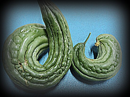 do, do, do... bitter melon (ampalaya) by mariatheresa