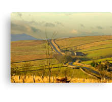 Dales Country Road Canvas Print