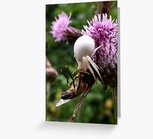 Crab Spider with Prey Greeting Card