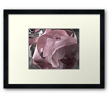 Pink Ribbon And Rose Framed Print