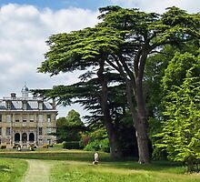 Stroll In The Grounds ~ Kingston Lacy by Susie Peek