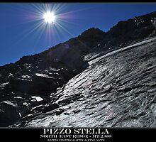 pizzo stella by kippis