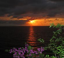 Seasons in Puerto Vallarta by Bernhard Matejka