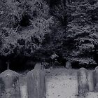 Beyond the Grave... by paradox0076