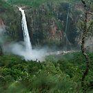 Wallaman Falls , FNQ by Susan Kelly