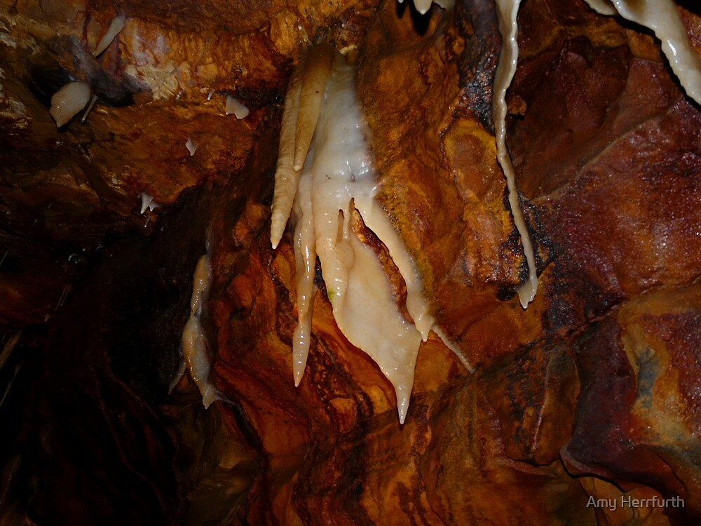cavern ceiling by Amy Herrfurth