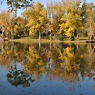The Golden Park by DottieDees