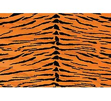 Tiger Pattern Halloween Costume Photographic Print