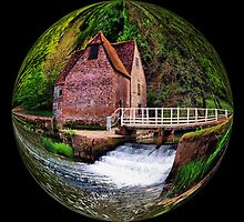 The Mill at Sturminster Newton by Clive