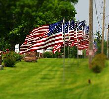 Patriotic by Jeffrey J. Miller