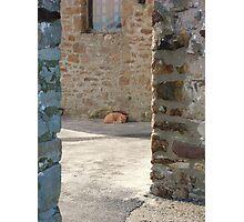 Landscape Photography - Fort Niagara 01 Photographic Print