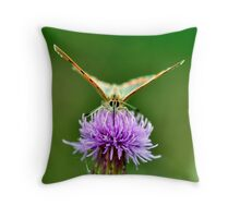 Small Copper Throw Pillow